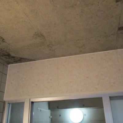 宇都宮市 浴室壁一部補修工事