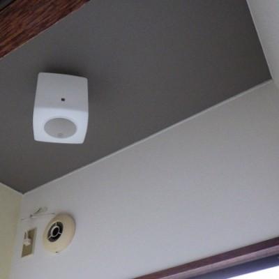 壬生町 内装リフォーム トイレ交換 和室のクロス工事 CF張り替え 天井野縁組 和天井解体